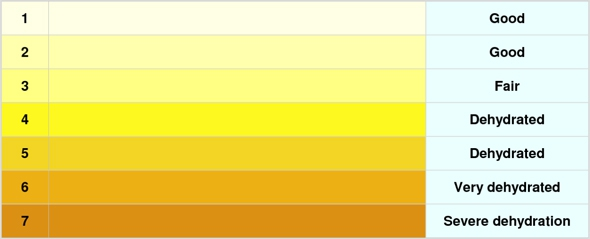 Practicesurvival.Com Health Urine Color Chart